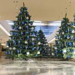 holiday plant and christmas tree decoration services addison tx