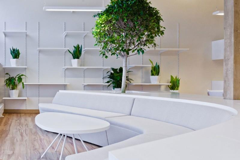 Lobby seating plants in Dallas, Texas