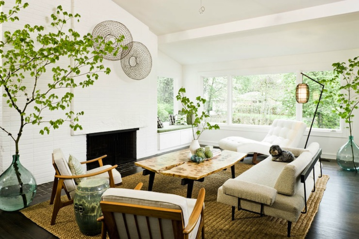 Interior Garden Design & Installation Dallas/Ft. Worth TX | Foliage ...