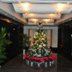 Holiday Design services by Foliage Design Systems in Lewisville TX