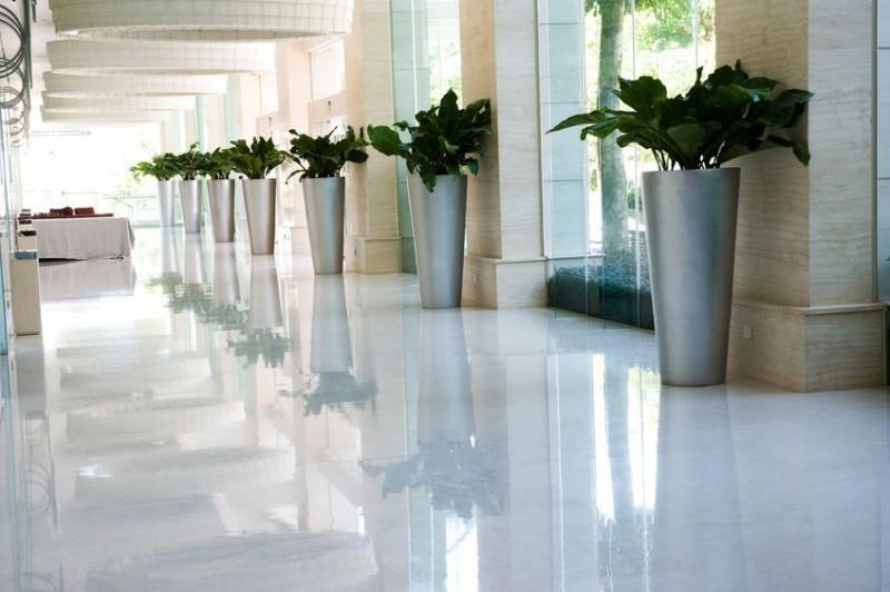 interior plant design garland tx