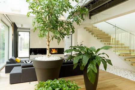 indoor plant rentals garland texas