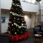 Christmas Tree Display Dallas Forth Worth TX