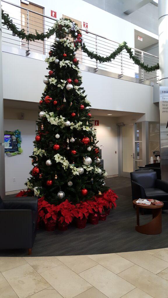 Christmas Tree Display Addison Texas