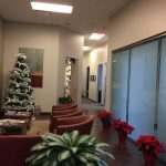 Addison TX Foliage Design Systems Holiday Plant Decor